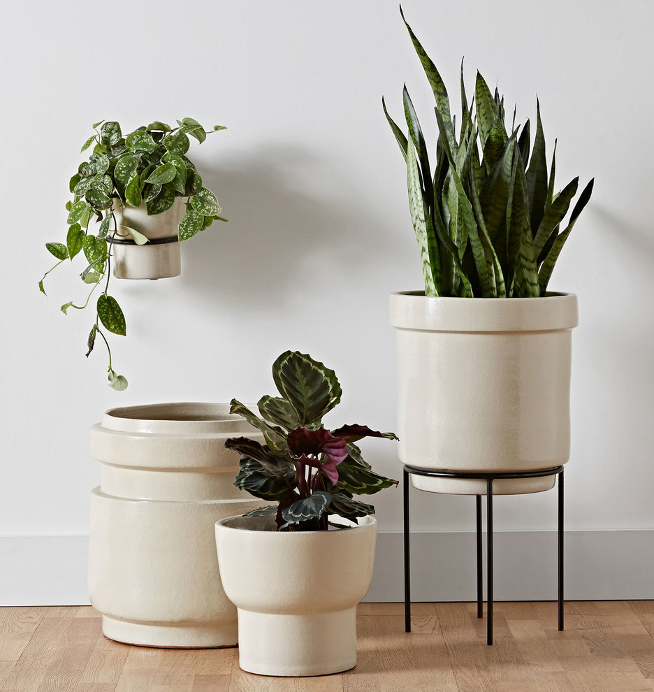 Brice Wall Mounted Planter and Stand