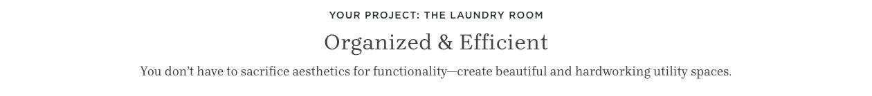 Organized & Efficient