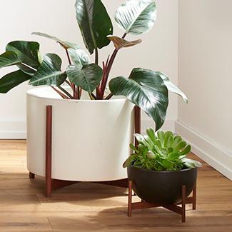 0418 plantershop 325x325 indoor 2