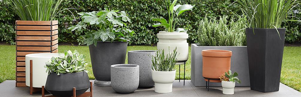 0418 plantershop 1005x340 blog