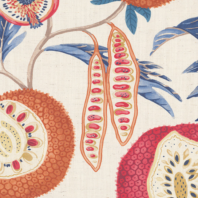 Jackfruit Indigo Rambutan
