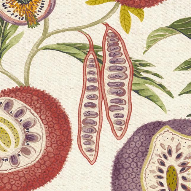 Jackfruit Fig Olive